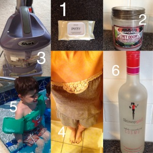 1 purity cleansing wipes from Philosophy 2 Pet Odor Exterminator Candle Mulberry & Spice Scent 3  Shark Navigator vacuum cleaner 4 Lucky Brand strapless cotton romper 5 Puddle Jumper life jacket 6 Skinnygirl Cocktails White Cranberry Cosmo